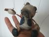 pug, price 10.000 CZK